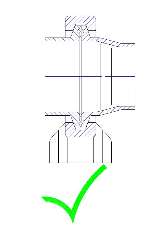 Tri-Clamp Verbindung mit abreduziertem TC-Stutzen